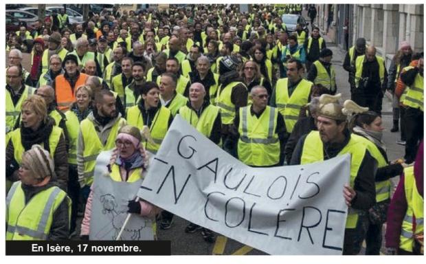 FR Angry Gaulois