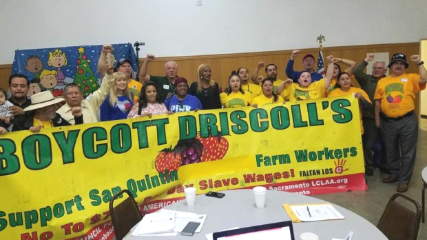 (11) Behind Driscoll's Banner copy